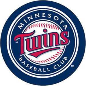 Minnesota Twins Magnet 4in