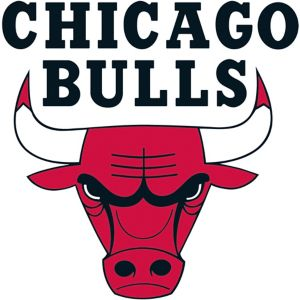 Chicago Bulls Cling Decal