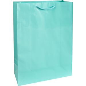 Robin's Egg Blue Gift Bag