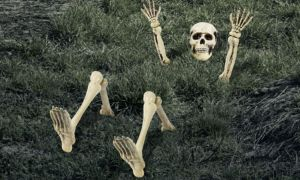 Lawn Skeleton Decoration 12pc
