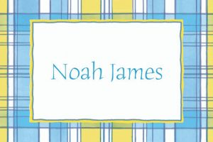 Custom Blue & Yellow Check Baby Shower Thank You Notes