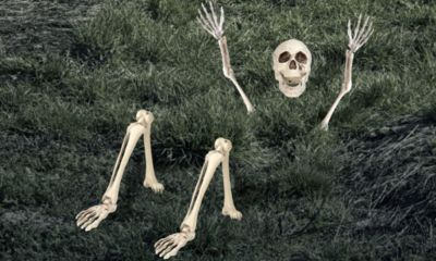 Life Size Groundbreaking Skeleton 5pc