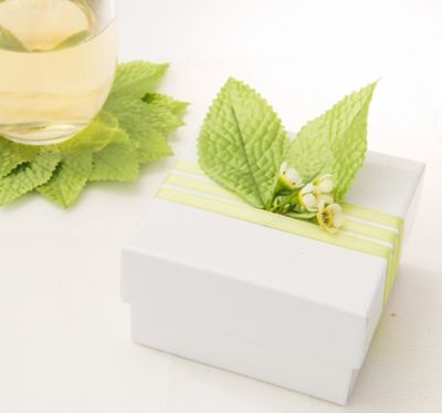 Green Leaves Wedding Favor Accessory