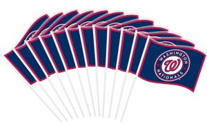 Washington Nationals Mini Flags 12ct