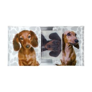 Dachsund Flag Page Markers 72pc