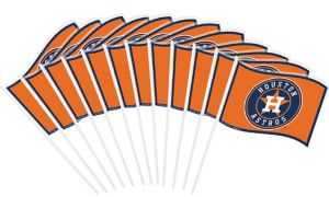Houston Astros Mini Flags 12ct