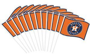 Houston Astros Mini Flags 12ct