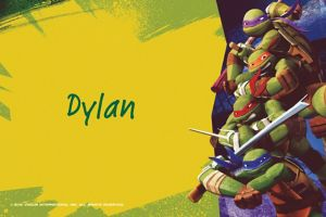 Custom Teenage Mutant Ninja Turtles Thank You Notes