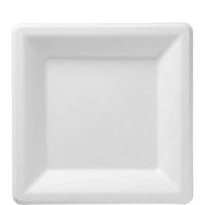 Eco-Friendly White Sugar Cane Square Lunch Plates 15ct