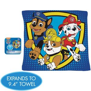 PAW Patrol Grow Towel