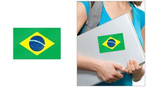 Brazilian Flag Cling Decal