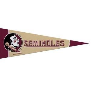 Small Florida State Seminoles Pennant Flag