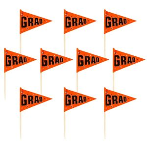 Orange Graduation Flag Picks 36ct