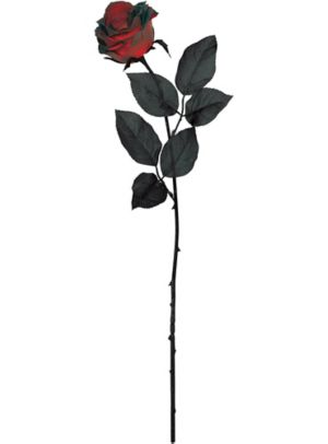 Dark Red Fabric Roses