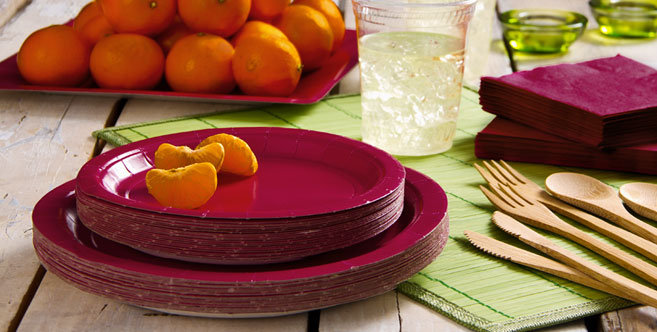 Eco Friendly Raspberry Tableware Party City