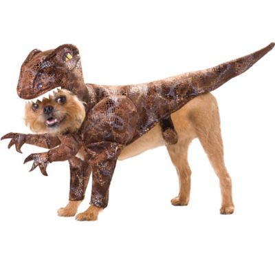 Animal Planet Raptor Dinosaur Dog Costume