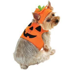 Jack-O-Lantern Pumpkin Dog Costume