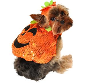 Sequin Pumpkin Dog Costume