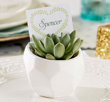 Succulent White Geometric Planters