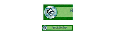 Tampa Bay Rays Custom Banner 6ft