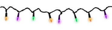 Halloween String Lights 21ft