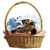 Red Riding Hood Basket with Wolf's Head