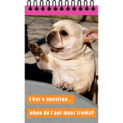 I Haz A Question Loldogs Notepad