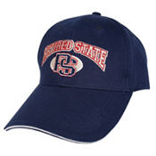 Retired State Baseball Hat
