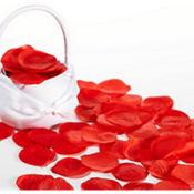 Red Rose Petals 300ct