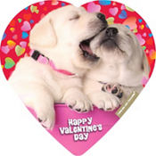Cuddly Bull Dog Puppies Heart Box of Chocolates 4pc