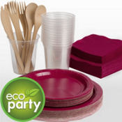 Eco Friendly Raspberry Tableware