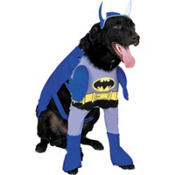 The Brave and the Bold Batman Dog Costume