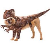 Animal Planet Raptor Dinosaur Dog Costume