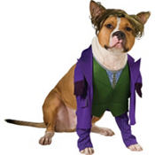 The Joker Dog Costume