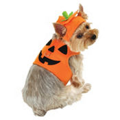 Jack-O-Lantern Pumpkin Dog Costume