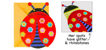 Premium Sliding Ladybug Invitations 8ct
