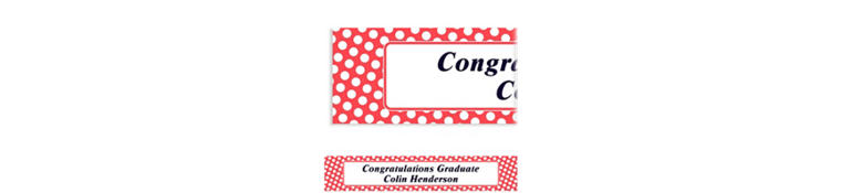 Custom Red Polka Dot Banner 6ft
