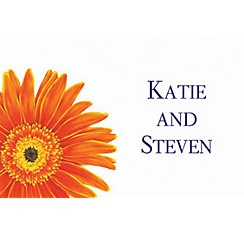 Giant Gerber Daisy Custom Thank You Note