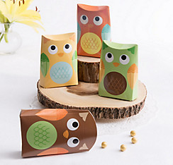 Owl Favor Boxes 24ct