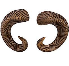 Ram Horns