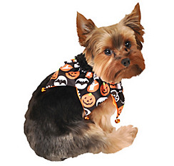 Halloween Night Dog Jester Collar