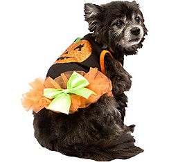 Glitter Pumpkin Dog Costume