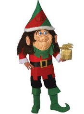 Adult Parade Elf Costume