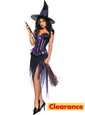 Adult Purple Carousel Witch Costume