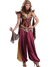 Adult Arabian Princess Costume