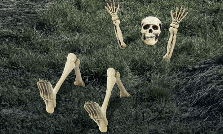 quick shop lawn skeleton decoration 12pc - Skeleton Decorations