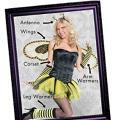 Honey Bee Mix & Match Women's Looks