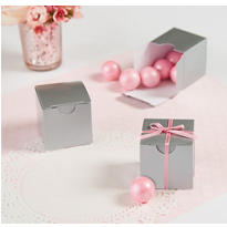 Silver Wedding Favor Boxes 100ct