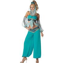 Adult Harem Jewel Genie Costume Premier