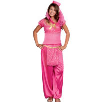 Teen May K Wish Genie Costume
